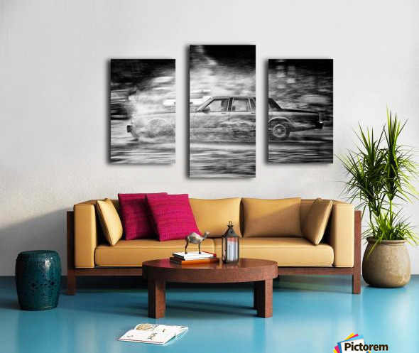Dissection Canvas print