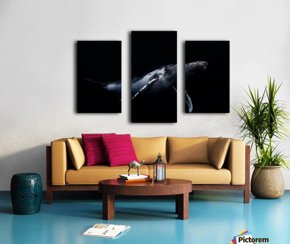 Black & Whale Canvas print