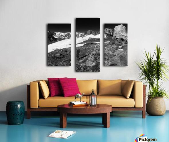 The Tundra Canvas print