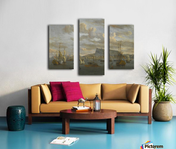 A view of Nafp Canvas print