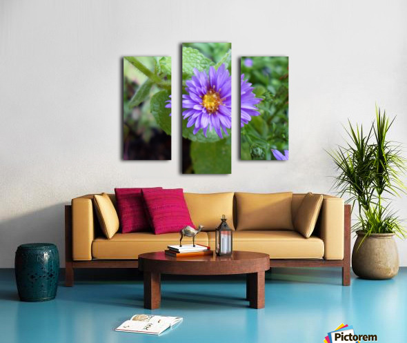 SAM_0414 (2) Canvas print