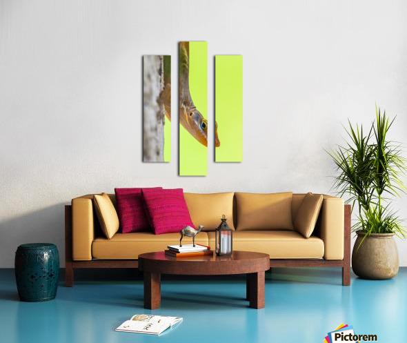 IMG_1264 Canvas print