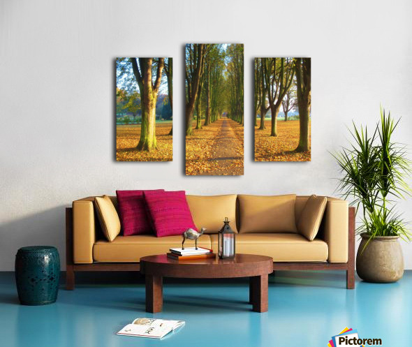 Autumnal Avenue Canvas print