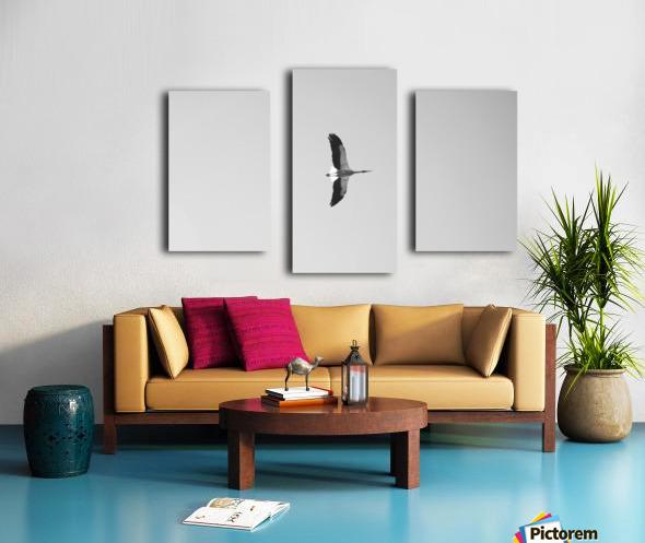 Accolade Canvas print