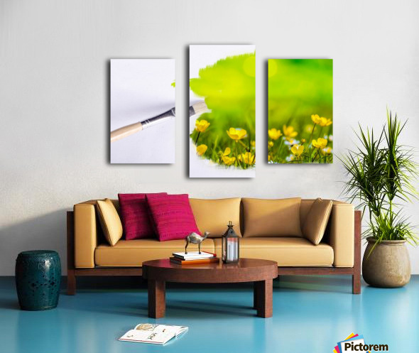 Paintbrush Outdoor Flower Flowers Sunlight Canvas print