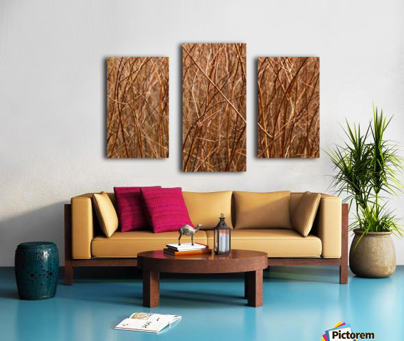 Abstract Background Branch Brown Color Flora Canvas print