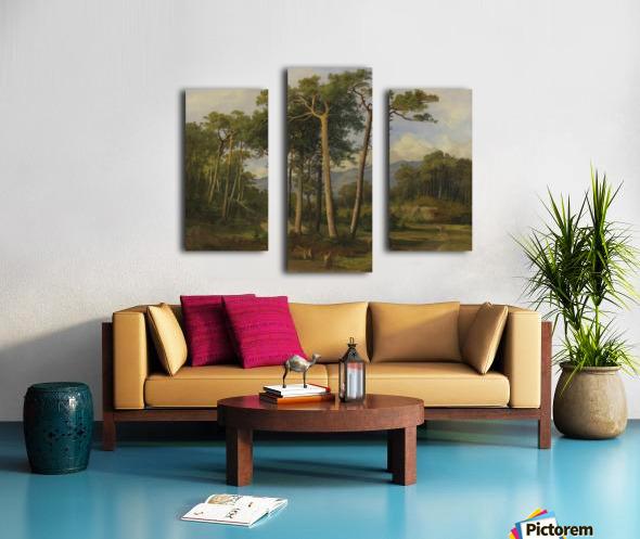 A forest landscape Canvas print