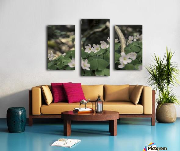 bokeh Canvas print