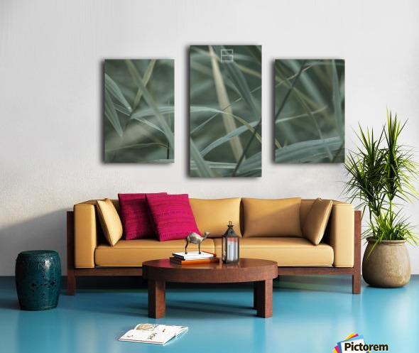 ; Canvas print