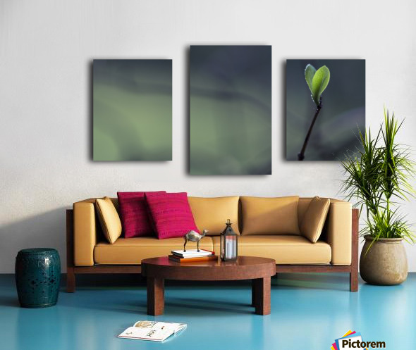 . Canvas print
