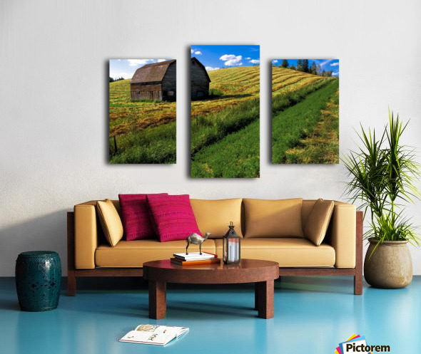 Old Barn In A Field Canvas print