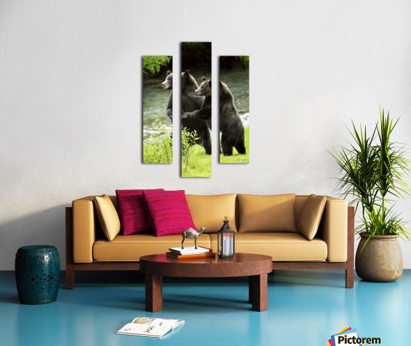 Two Grizzly Bears Canvas print