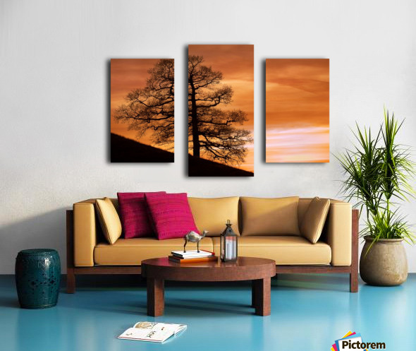 Tree Against A Sunset Sky, Nottinghamshire, England Canvas print
