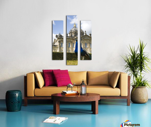 Peacock In Front Of A Building Canvas print