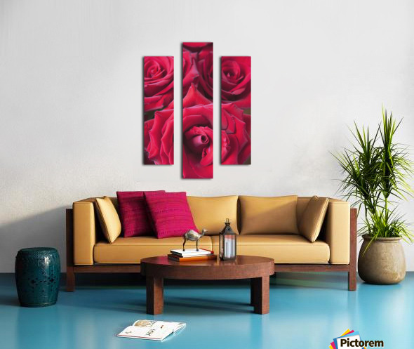 Red Roses; Quebec, Canada Canvas print