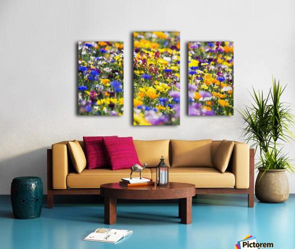 Wildflowers, Mount Hood, Oregon, Usa Canvas print