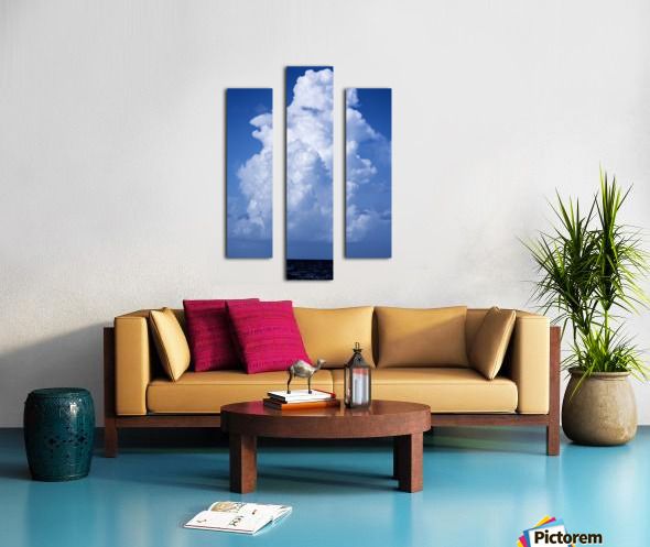 Billowing Canvas print