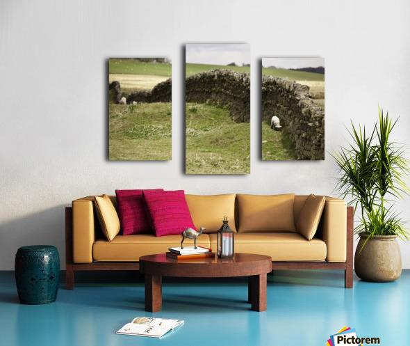Northumberland, England; Sheep Grazing Along A Stone Wall Canvas print
