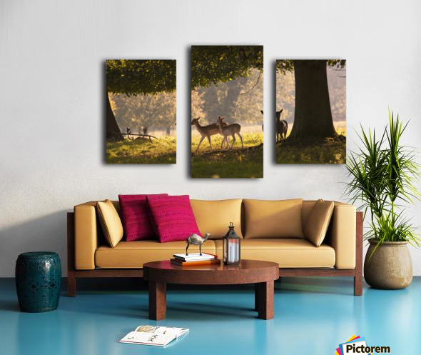 Deer Standing Under A Tree; North Yorkshire, England Canvas print
