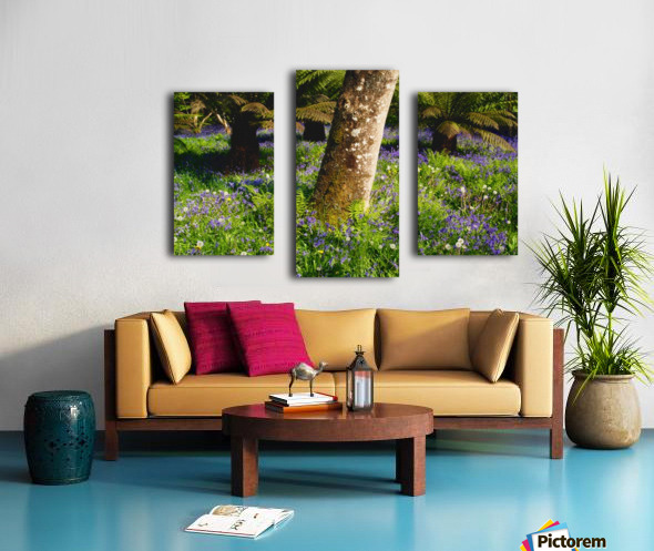 Mount Congreve Gardens; County Waterford, Ireland Canvas print