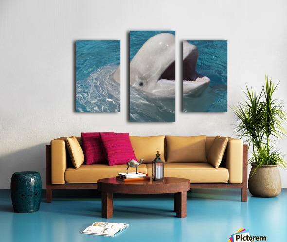 Beluga Whale In Captivity - Marineland - Niagara Falls, Ontario, Canada Canvas print