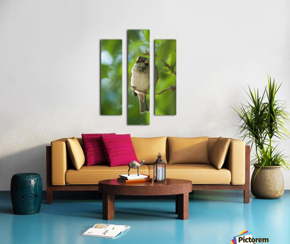 A Sparrow Perched On A Small Branch; Tarifa, Cadiz, Andalusia, Spain Canvas print
