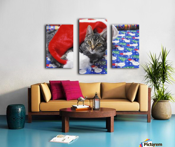 Grey tabby cat with santa claus hat lying on christmas gift wrap;Vancouver british columbia canada Canvas print