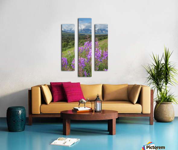 Scenic view of landscape near Palmer, Alaska, with Fireweed (Epilobium angustifolium) in the foreground, Southcentral Alaska, summer Canvas print
