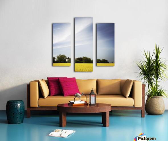 Scania sky Canvas print