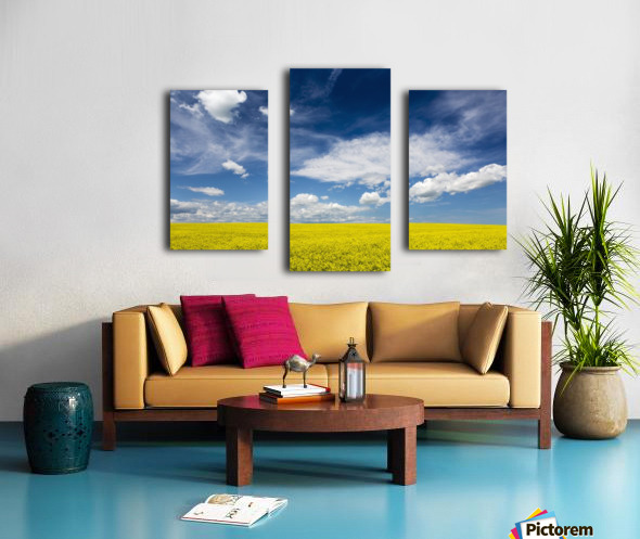 Flowering canola field with clouds and blue sky; Alberta, Canada Canvas print
