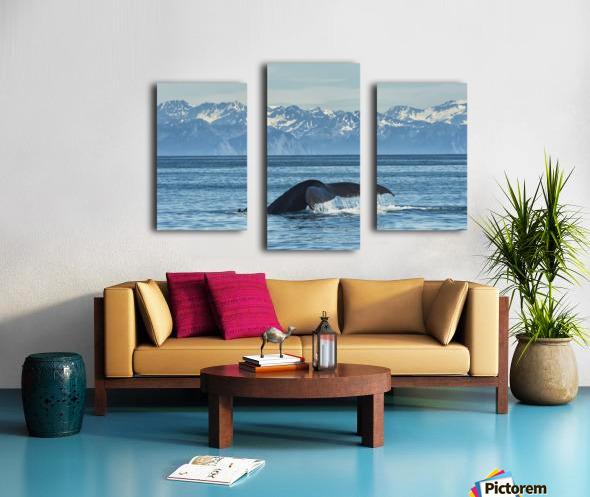 Humpback whale (Megaptera novaeangliae) in Seward harbour; Seward, Alaska, United States of America Canvas print