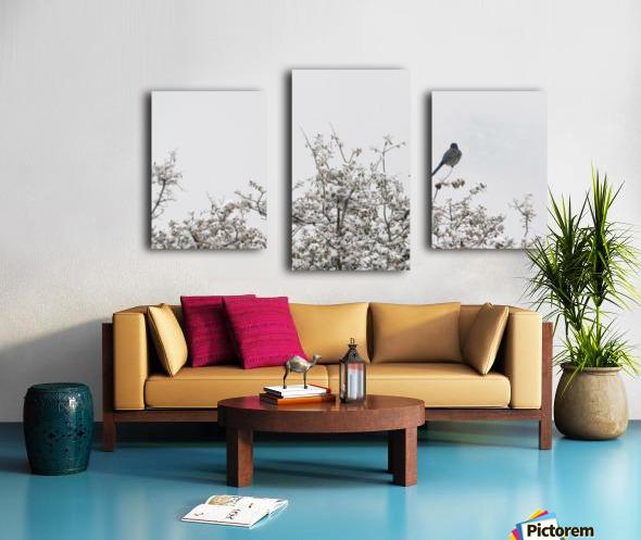 Bluebird in Snow 3VP Canvas print