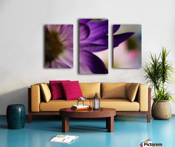 FPS-0002 Canvas print