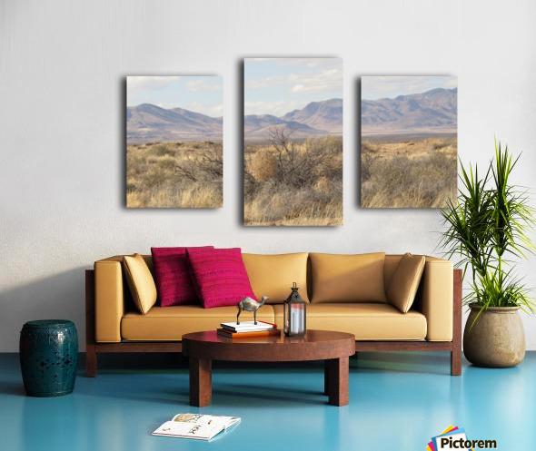 Landscape around Fort Craig VP1 Canvas print
