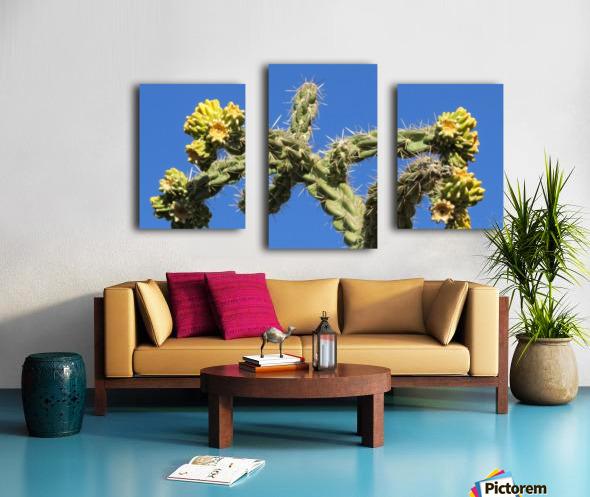 Cactus in bloom Canvas print