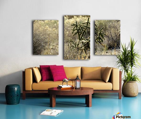 Shimmering  Cactus VP1 Canvas print