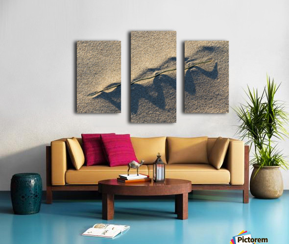 Grass Blade and Serpent Shadow Canvas print