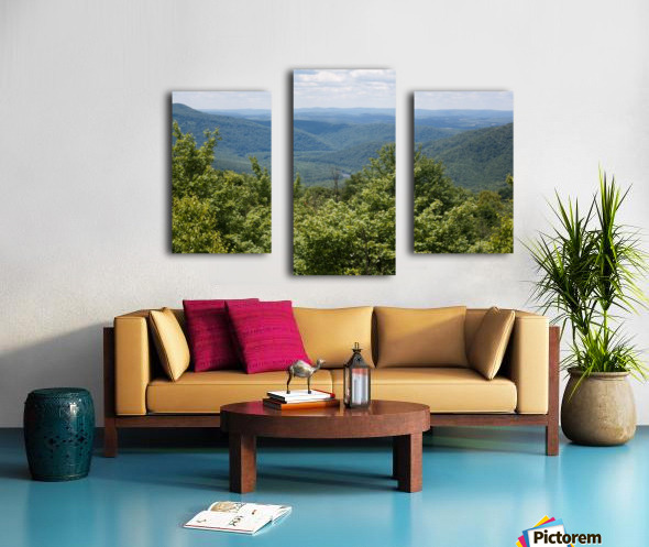River Valley Canvas print