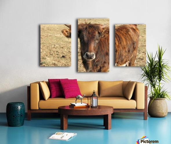 Bull in the Spring VP1 Canvas print