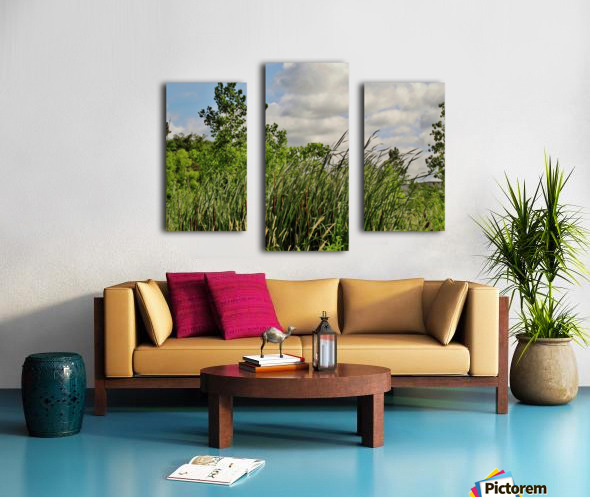 Cattails In The Wind Canvas print