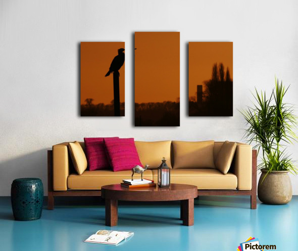 Cormorant perch Canvas print