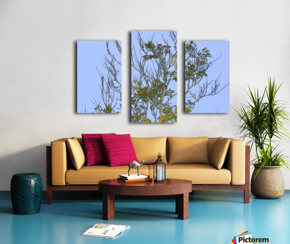 Two Blue Jays in Tree 2 abstract Canvas print