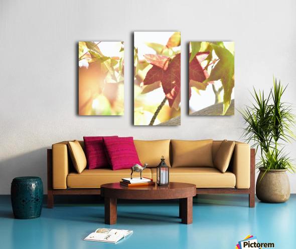 Leaves Macro 1  Canvas print