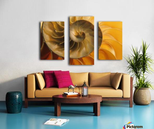 Inside Of Nautilus Shell Canvas print