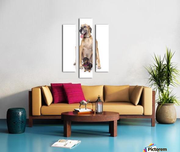 Great Dane And Dachshund Portrait Canvas print
