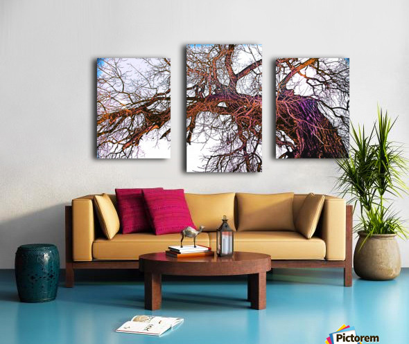 100yearOLDtree Canvas print