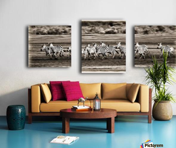 Running Zebras, Serengeti National Park, Tanzania, Africa Canvas print