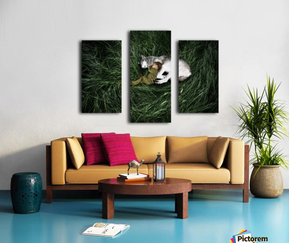 Unison with nature Canvas print