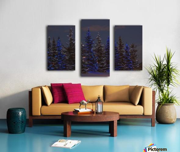 Calgary, Alberta, Canada; A Row Of Evergreen Trees With Christmas Lights Canvas print