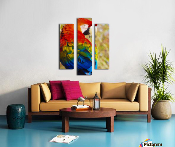 All the Colors of the Rainbow Canvas print